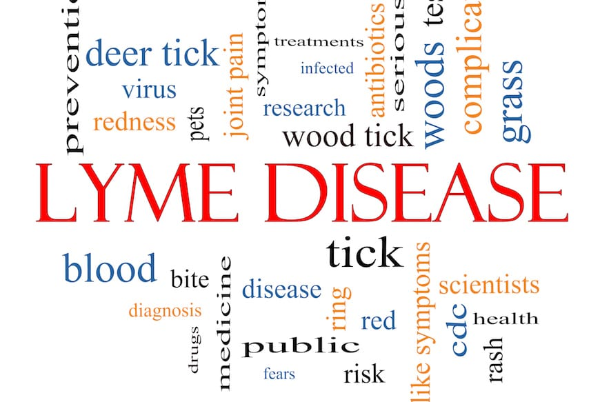 Lyme Disease and Plant Medicine